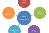 Online Video Consumption Research